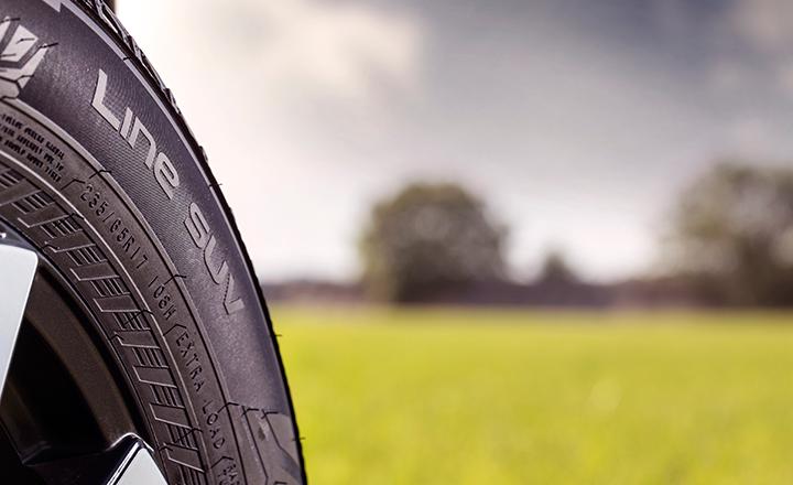 轮胎胎侧标识