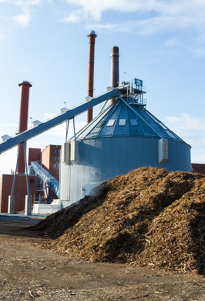 New biomass power plant increases the share of green energy